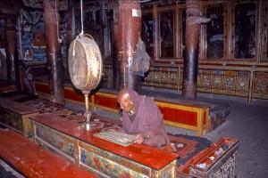 Ladak, India-168